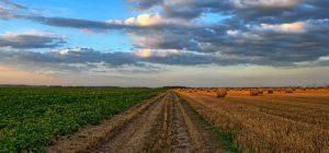 aliquote iva agricoltura