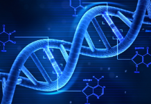 DNA Prova Regina